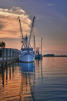 """""""Shrimp boats are a comin their sails are in sight!"""" ... song recorded by Jo Stafford in 1951 called, """"Shrimp Boats"""""""