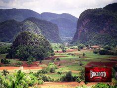 """CERVEZA BUCANERO TE DICE ¿Qué son los Mogotes en Cuba? Los """"Mogotes"""" son unas colinas con una forma y paisajes muy especiales, son varias colinas cubiertas de verde vegetación y esparcidas en un valle, algunas de altura considerable configura un paisaje muy espectacular, dentro de Pinar del Río, también conocido como El Valle del Silencio en dónde hay un mirador desde el cual se contempla una magnífica panorámica de los Mogotes. www.cervezasdecuba.com"""