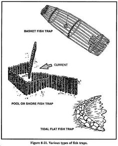 These fish traps are pretty efficient if well placed because they let you go off and do other things, aka: preparing camp, hunting, or other ways of fishing.