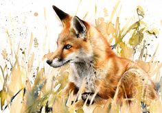 "Beautiful artwork would make an awesome tattoo especially with the water color tattoo trend going around |Saatchi Online Artist: Lucy Newton; Other, Mixed Media ""Red Fox""."