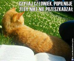 Koty takie (czasem) są, że pomagają w czytaniu ;-) I Love Books, Humor, My Love, Movies, Cartoons, Cats, Cartoon, Films, Humour