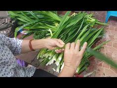 สอนพับดอกใบเตย(สำหรับมือใหม่)เข้าใจง่าย byสมร ใบเตยหอม - YouTube