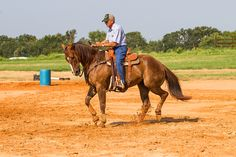 If your horse ducks in to the barrel, practice two-tracking away from the barrel until the horse moves freely again. Horse Training, Training Tips, Barrel Racing Tips, Horse Exercises, Barrel Horse, Horse Tips, Rodeo, Ducks, Pony