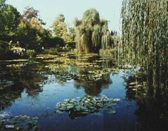 Monet's garden at Giverny:  Lily Pond