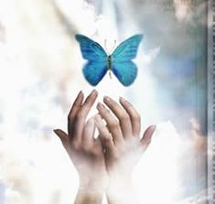 To become happy. The bothered label? Profile Dp, Hand Images, Butterfly Kisses, Walk By Faith, Beautiful Butterflies, Painting, Pictures, Freedom, Hijab Dpz