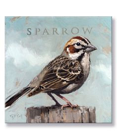 Look at this #zulilyfind! Sparrow Giclee Gallery-Wrapped Canvas by Darren Gygi Home Collection #zulilyfinds
