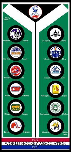 Hockey Room, Hockey Puck, Ice Hockey, Nhl Logos, Sports Logos, Houston Aeros, Quebec Nordiques, Hockey Pictures, Rangers Hockey