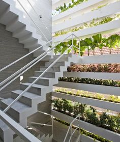 Stacking Green house : vo trong nghia : ho chi minh city : vietnam « openhouse