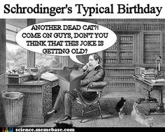 I'm always up for a Schrodinger's cat joke.