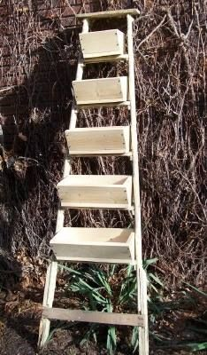Ladder with planter boxes attached to the rungs ~ would look great when planted and in bloom ~