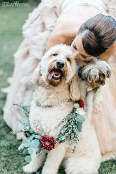 For Wynne and Ben's double wedding, guests were flown to the picturesque setting of Banff, Canada, to attend. Field Wedding, Cat Wedding, Wedding Couples, Outdoor Wedding Photography, Wedding Photography Inspiration, Banff, Minnesota, Toronto Wedding, Wedding Moments