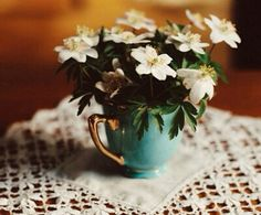 A fun image sharing community. Explore amazing art and photography and share your own visual inspiration! Teacup Flowers, French Romance, Bloom Where Youre Planted, Linens And Lace, Country Life, Amazing Art, Fall Decor, Farmhouse Decor, Tea Cups