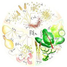 Careful with gluten rich grains, tend to inflame the pitta dosha - Ayurveda Lifestyle Ayurvedic Healing, Ayurvedic Medicine, Holistic Healing, Natural Medicine, Natural Healing, Holistic Wellness, Pitta Dosha Diet, Ayurveda Pitta, Ayurveda Yoga