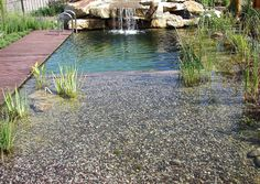 Natural swimming pool. Want to wade out ankle deep in gravel. Bet shallows heat water up nicely.
