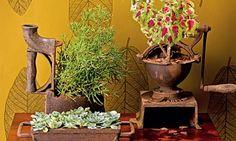 Pequenos jardins: inspire-se nessas ideias de arranjos - Casa - MdeMulher - Ed. Abril#1#3