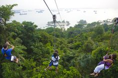 #Galaxytourism offers  #Singapore #MegazipAdventurePark Tour Packages and Tickets 2016. Book Early and get maximum discounts & attractive offers. http://goo.gl/UVQRzS