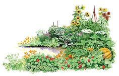 Self Seeding Vegetable Garden #gardening #garden #DIY #home #flowers #roses #nature #landscaping #horticulture