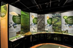 Our Global Kitchen: Food, Nature, Culture - Graphis