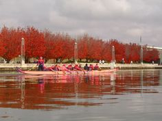 Canberra is this pretty at this time of year.