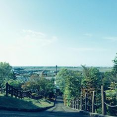 高低差好き 足ガクガク(笑)  #miniphotowalk #photowalk #photowalking #snap #niigata #japan #japanese #instagram #iphoneonly #iphonegraphy #iphoneography #iosphotography #sky #park #spring  #sunny  #fbp