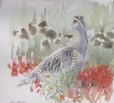 Painting  » Curlew  http://www.davedalyartist.com
