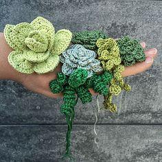 Ravelry: Superb Succulents pattern by Christine Hedwig Crochet Cactus, Crochet Diy, Crochet Home, Crochet Motif, Crochet Flower Patterns, Crochet Flowers, Cactus E Suculentas, Crochet Bouquet, Cactus Flower