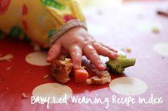 Baby Led Weaning Recipe Index