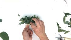 Doing your own wedding flowers has never been easier. With Bloom Culture we set you up with a guided approach and a step by step process. We give you flower recipes, supplies list, timeline, tutorials and so much more! Wedding Hair Flowers, Hair Comb Wedding, Flowers In Hair, Wedding Greenery, Diy Wedding Garland, Wildflowers Wedding, Simple Wedding Bouquets, Bridal Bouquets, Purple Wedding
