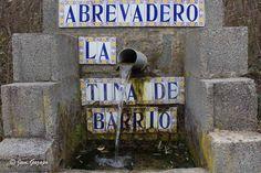 Garisea - 105881554744116108939 - Álbumes web de Picasa