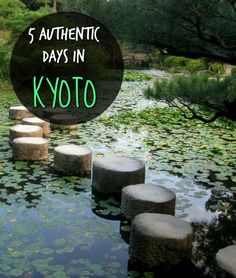 Home to countless shrines, temples and zen gardens, Kyoto is one of Japan's most…