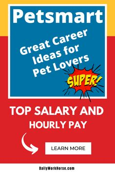 Daily Workhorse Job Applications Salary Find A Job Dailyworkhorse Profile Pinterest