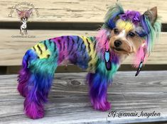 Dog Grooming, Dogs, Fictional Characters, Color, Art, Art Background, Pet Dogs, Colour, Kunst