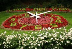 Clock of flowers, Viña del Mar,Chile, it`s so beautiful Amazing Gardens, Beautiful Gardens, Chile Tours, Places Around The World, Around The Worlds, Wonderful Places, Beautiful Places, Juan Fernandez, Dubai