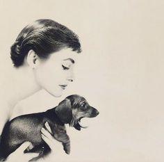 Audrey with Dauschund