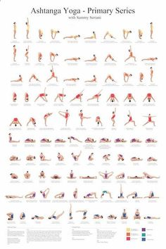 Easy Yoga Workout - 24x36 Ashtanga Yoga Primary Series with Sammy Seriani. This poster illustrates the postures of the primary series Full color poster shows perfect: Get your sexiest body ever without,crunches,cardio,or ever setting foot in a gym