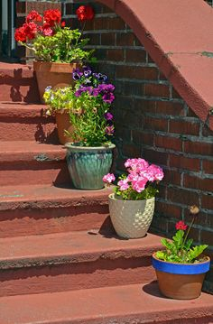 Epic gallery showcasing 64 outdoor steps with flower planters and pots to give you many ideas for dressing up your outdoor stairs. Stacked Flower Pots, Cement Flower Pots, Flower Planters, Large Backyard, Small Backyard Landscaping, Backyard Fences, Landscaping Ideas, Backyard Vegetable Gardens, Vegetable Garden Design