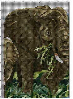 elefanten 7