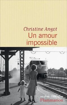 Un amour impossible, Christine Angot ~ Le Bouquinovore Good Books, Books To Read, My Books, Psalm 106, Book Writer, Lus, Lectures, Romance Books, Books