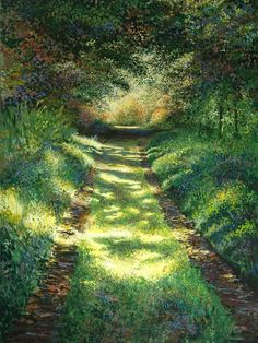 'Woodland Glade' by David Poulter      Though but a track, it gives shelter when we so desperately seek it!
