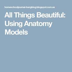 All Things Beautiful: Using Anatomy Models