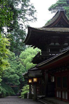 Isonokamijingu, Nara, Japan.   Japan is a beautiful mixture of the Old and the New.