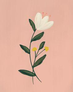 Halloween Illustration, Plant Illustration, Botanical Illustration, Digital Illustration, Flower Doodles, Botanical Drawings, Floral Illustrations, Hanging Art, Flower Art