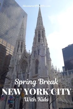 Spring Break in New York City with Kids. Join our family as we split a week between New York City a. New York City Vacation, New York City Travel, Us Travel Destinations, Metropolitan Museum, Empire State Building, Times Square, Washington, Road Trip, Spring In New York