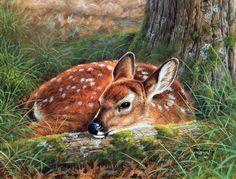 Monde animal. Artiste Abraham Hunter ..