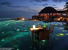 To dine with your feet in the water