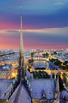 Cathédrale Notre-Dame de Paris  une vue magniifiique