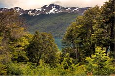 Paso Garibaldi - Ushuaia - Tierra del fuego