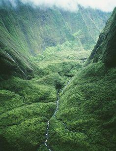 Зелёное природное — Мир зеленого цвета