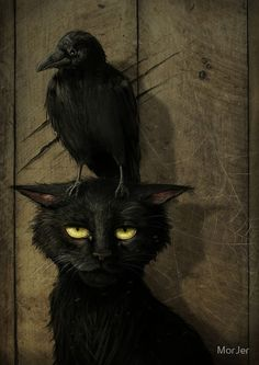 """the raven and the cat (small raven that is. or perhaps the artist is one of those who thinks """"raven"""" and """"crow"""" are synonymous. Crazy Cat Lady, Crazy Cats, Pinterest Arte, The Raven, Raven Art, Crow Art, Crows Ravens, Arte Obscura, Illustration Art"""