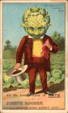 cabbage head recipe vegan coleslaw - The Tasty Vegan tasty vegan coleslaw - Vegan Coleslaw Vintage Labels, Vintage Ephemera, Vintage Cards, Vintage Postcards, Vintage Images, Vintage Items, John Kenn, Cabbage Head, Cabbage Patch